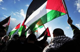 A group of demonstrators wave the Palestinian flag on Dec. 31, 2009.