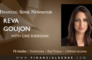 Reva Goujon interview on Financial Sense Newshour