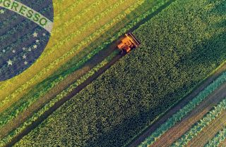 Using the rise of Brazil's agricultural sector as an example, the African continent could take advantage of its wealth of arable land and fertile soil.