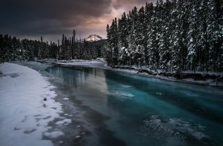 The Bow River in Alberta is partially frozen