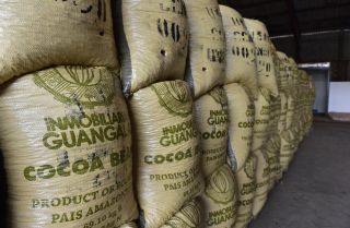 Cocoa beans, one of Ecuador's top 10 exports, await shipment from Guayaquil.