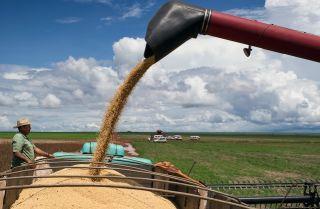 Brazil: Port Complex Opens New Grain Export Route  Read more: Brazil: Port Complex Opens New Grain Export Route