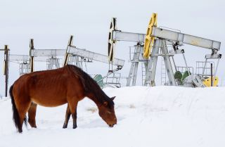 A horse grazes near oil pumpjacks outside the Russian city of Surgut on March 10, 2020.