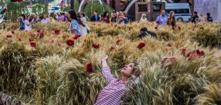 Visitors in downtown Moscow on July 20 explore a wheat field with poppies that was installed during a festival held in Revolution Square next to the State Historical Museum.