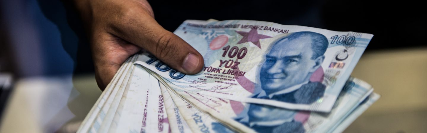 Making Sense of the Economic Crisis in Turkey