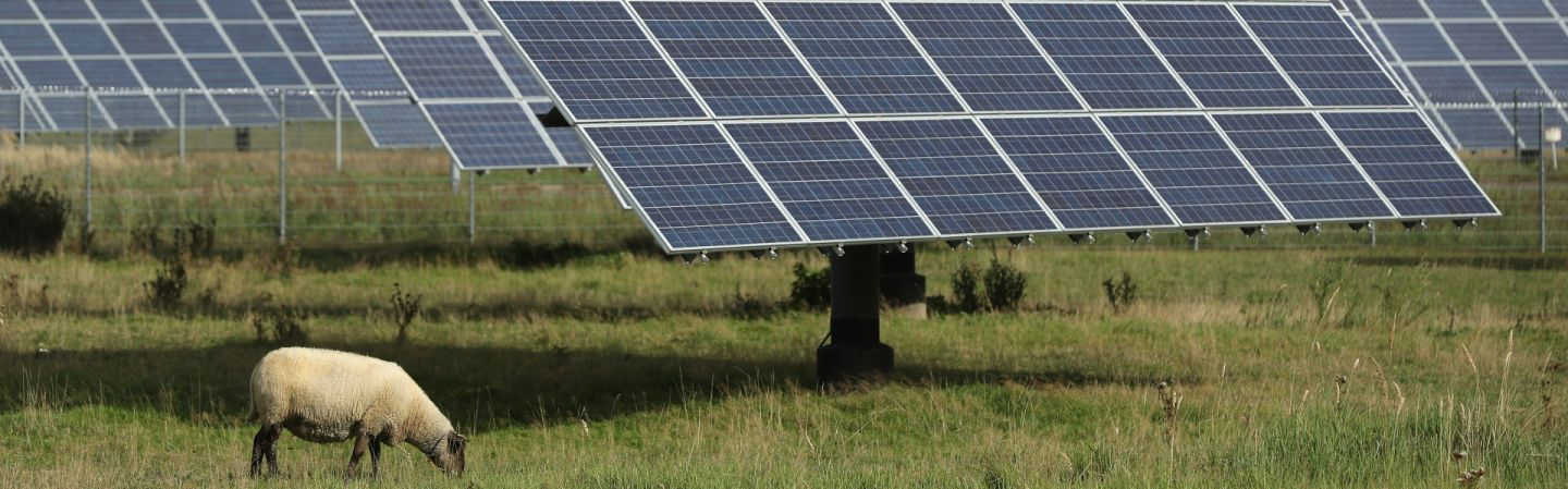 Germany Solar Power >> Germany And The Green Power Revolution