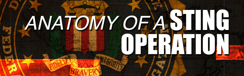 Anatomy of a Sting Operation