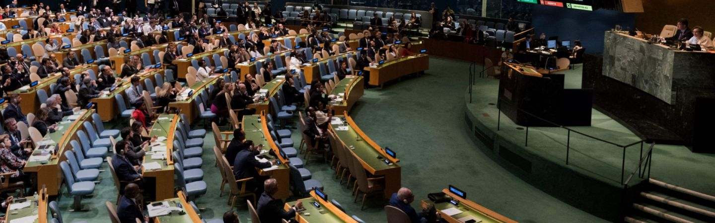 This picture shows a session of the U.N. General Assembly from June 13.
