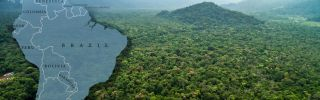 The rainforest covers more than half of Brazil's territory, including its border with seven other countries. Yet it is home to only about 12 percent of Brazil's population.