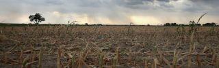 Drought and Overuse Plague a Critical U.S. Aquifer