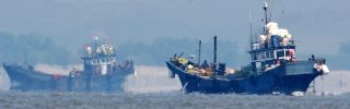 South Korea's 'Razor Reef' Deters Illegal Fishing