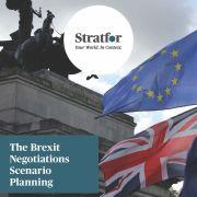 The Brexit Negotiations Scenario Planning