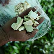 A farmer shows cocaine base paste made from coca leaves at a clandestine farm next to the Inirida River in Colombia during September 2017.