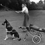 It may not take canine caddies to revive golf in the United States, just a different approach to the game.