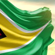 This photo shows the Guyanese flag.