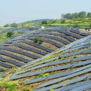 Harvesting the Sun's Energy
