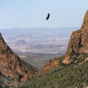 This photo shows the rugged territory in the Chisos Mountains typical of the landscape in the Big Bend region along the U.S.-Mexico border.