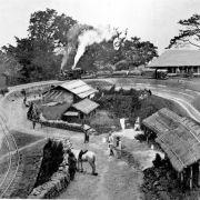 A goods train in India, circa 1914.