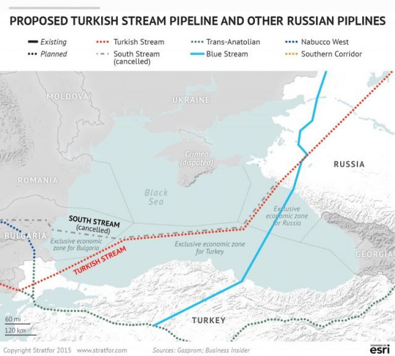 Image result for russia bluestream stratfor