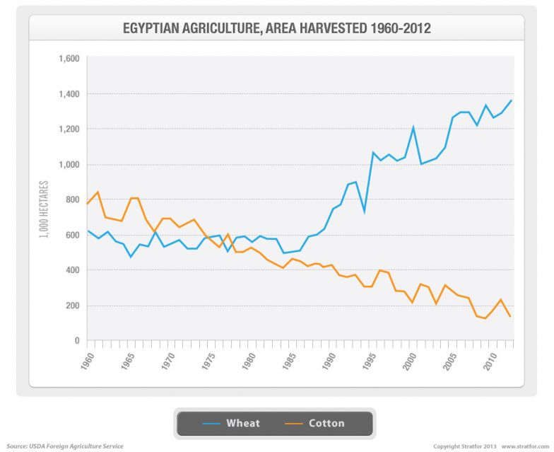 Egyptian Agriculture, Area Harvested 1960-2012