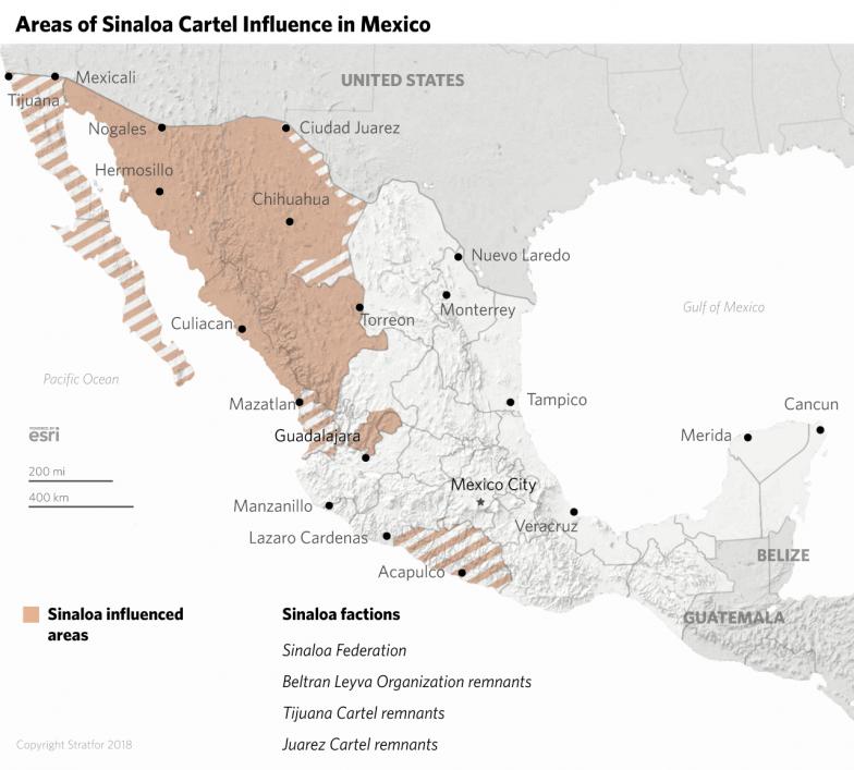 What Happens When a Major Mexican Cartel Leader Falls?