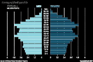 Japan Demographic Pyramids