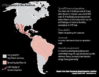 Chikungunya in the Americas