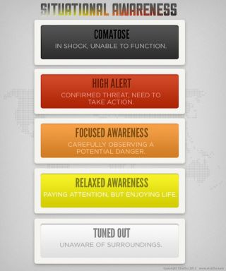 A chart showing the five types of situational awareness.