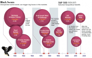 A graphic showing how unexpected world events -- so-called black swans -- can trigger big losses in the markets.