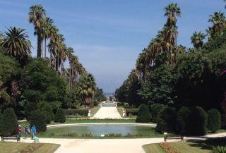 A Public Garden in Algiers