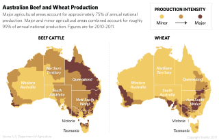 Beef and Wheat Production