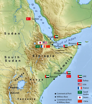 Port Projects and Military Bases in the Horn of Africa