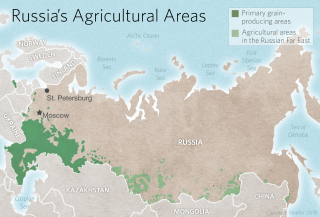 Russia's Agricultural Areas