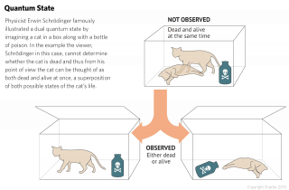 Physicist Erwin Schrödinger famously illustrated a dual quantum state by imagining a cat in a box with a bottle of poison. From outside the box, the viewer cannot determine whether the cat is dead and can thus think of the cat as at once dead and alive, a superposition of both possible states of the cat's life.