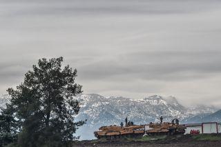 Turkish tanks sit near the Syrian border on Jan. 24.