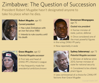 Zimbabwe: The question of succession